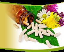 img-slider-herbal